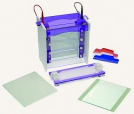 VS20WAVESYS vertical gel electrophoresis and casting base
