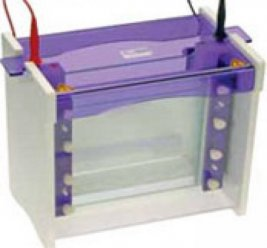 VS20WAVED vertical gel electrophoresis